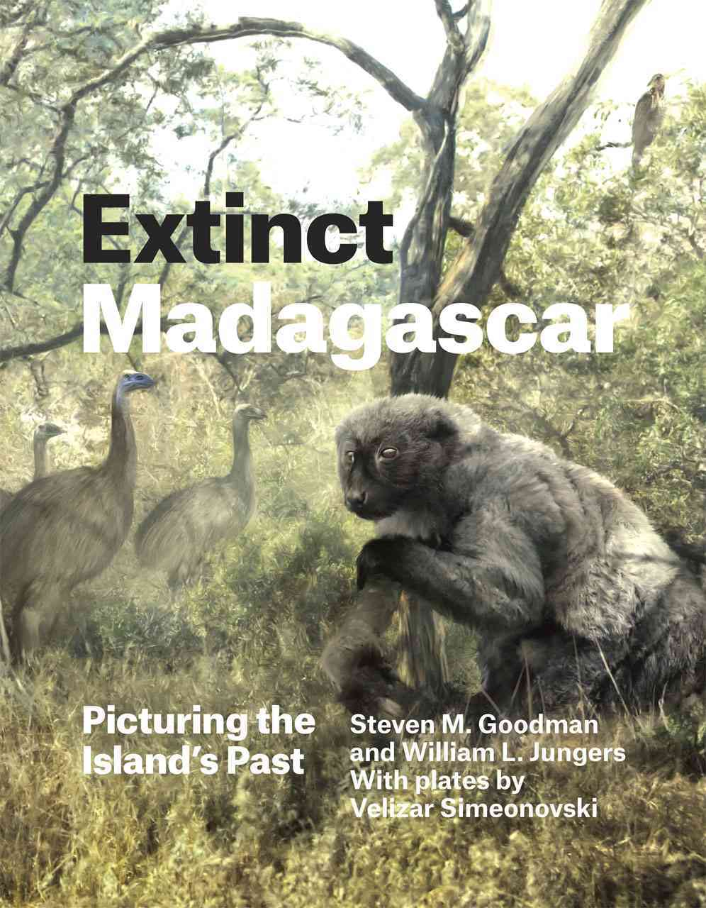 Extinct Madagascar By Goodman, Steven M./ Jungers, William L./ Simeonovski, Velizar (PHT)